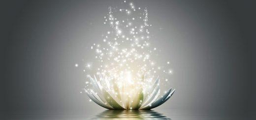 il cuore della meditazione