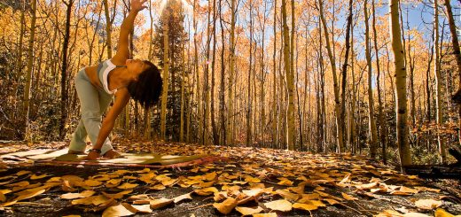 asana autunno yoga
