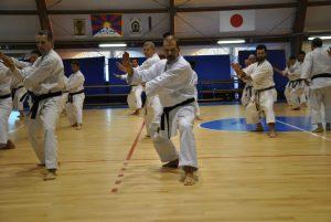 karate origini e consigli