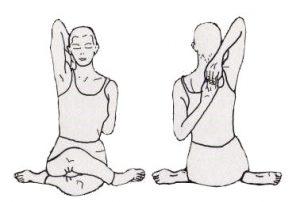 gomukhasana yoga