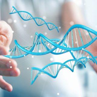 epigenetica e autoguarigione