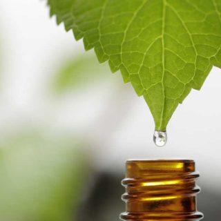 prodotti naturali e bio