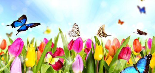 esercizi primavera rigenerazione